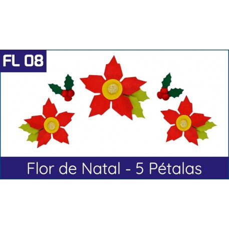 Cartela FL 08