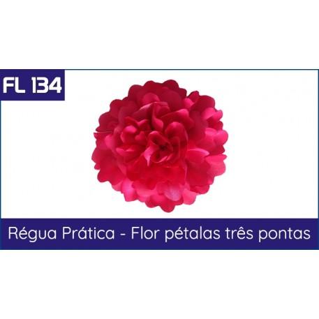 Cartela FL 134