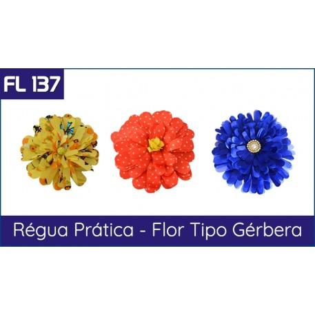 FL 137 - Régua Prática