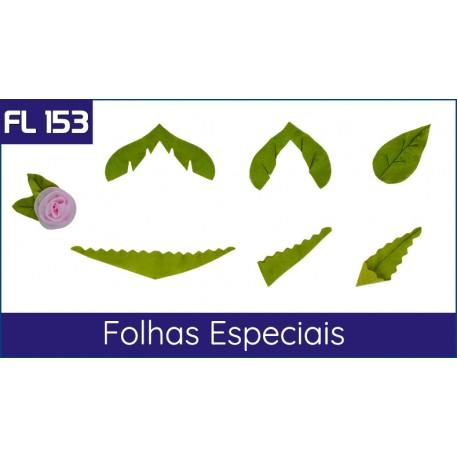Cartela FL 153