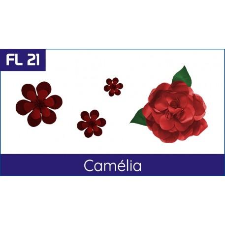 Cartela FL 21