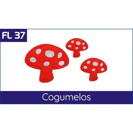 Cartela FL 37