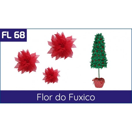 Cartela FL 68