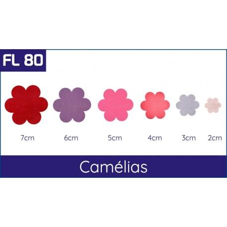 Cartela FL 80