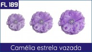 Cartela FL 189 - Camélia Estrela Vazada
